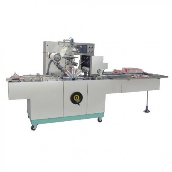Automatic Plastic Pouch Molasses Shisha Tobacco Packing Machine in Factory Price 180-350mm #1 image